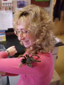 tarantula-and-sy