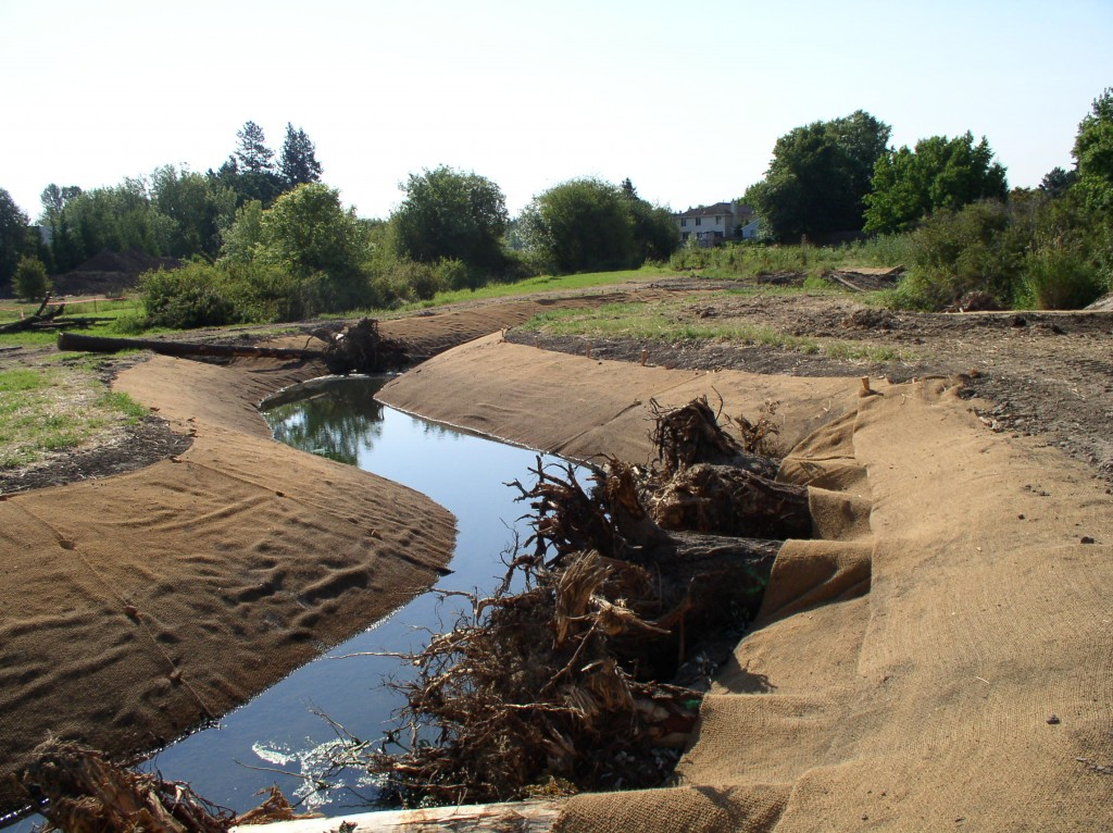 At some sites, like the stream pictured above, restoration efforts included remaindering the channel, to restore its connection to the floodplain.  Photo courtesy of the Bonneville Environmental Foundation.