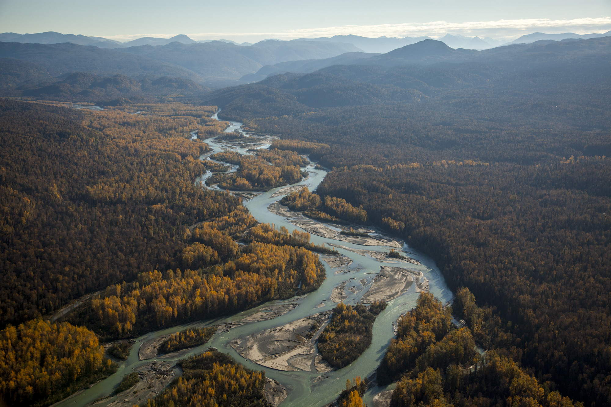 An aerial shot of the Talkeetna River, a tributary of the Susitna River. Photo by Travis Rummel